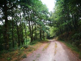 Chantada - Galicia